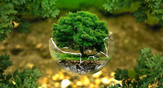 Paint your customers green – Share your green vision